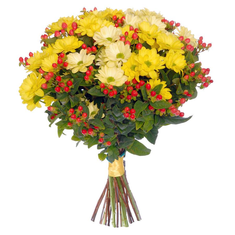 Пунта кана флорист
