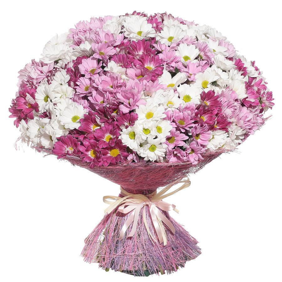 Заказать цветы доминикана