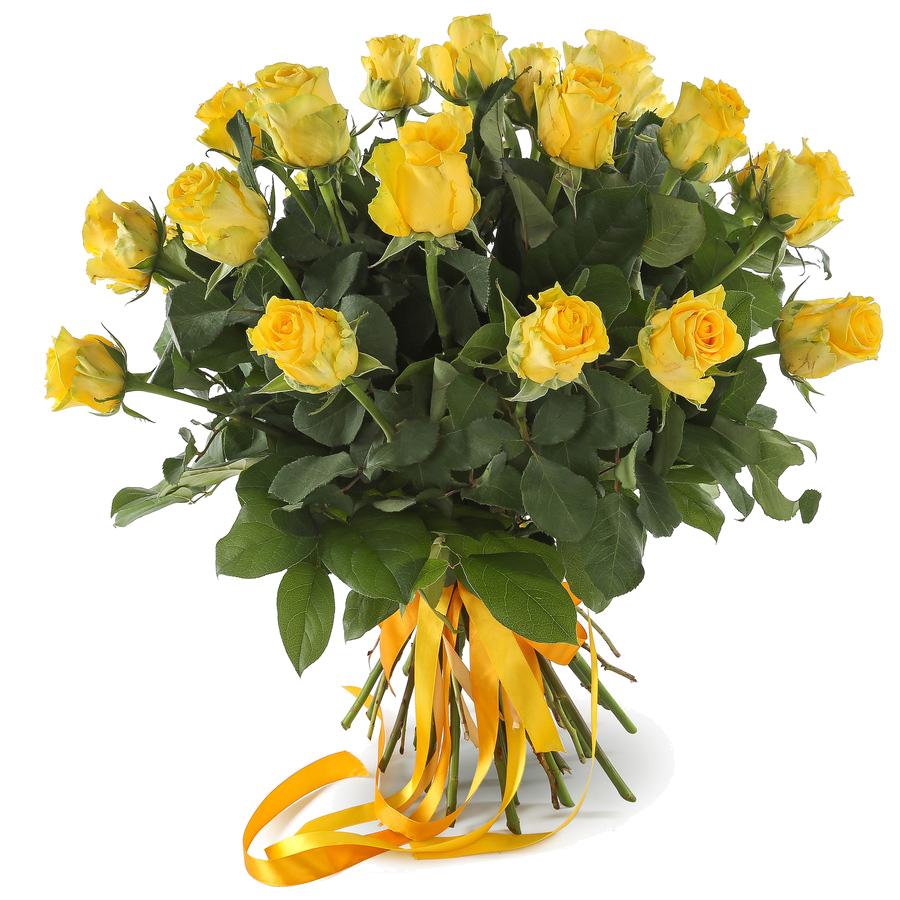 Цветы Пунта Кана
